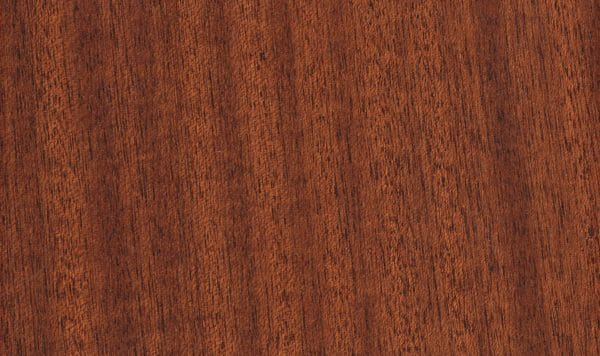 Wide Width Collection - Chickory Root Mahogany