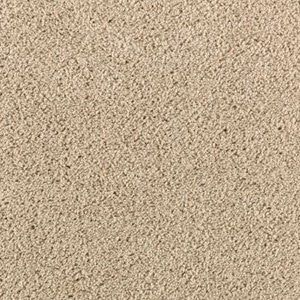 Aladdin Carpet SP346 02