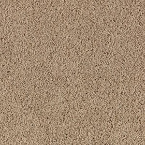 Aladdin Carpet SP346 04