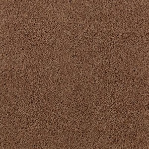 Aladdin Carpet SP346 05