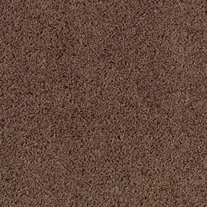 Aladdin Carpet SP346 06